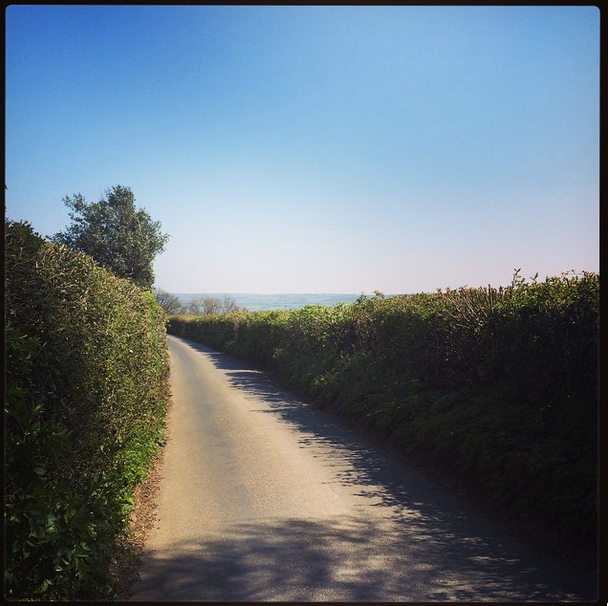an image from a ride from the intensive week - a sunny day, the road winds away into the distance